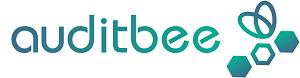 auditbee Datenanalyse
